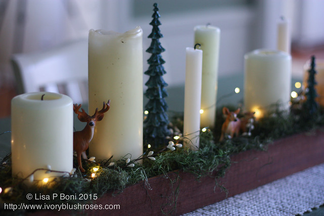 20151206-Advent Candles