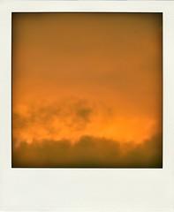 Rothko pola / 2015-12-07