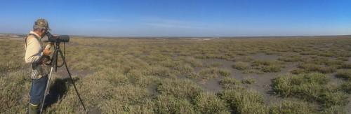 mikaelbehrens landscape people texas cbc corpuschristi unitedstates us
