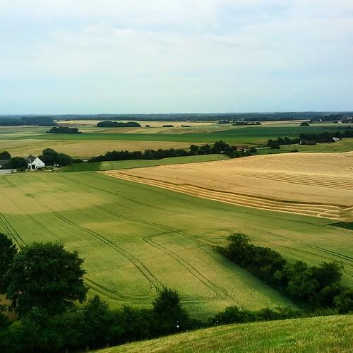 Campi di battaglia, Waterloo