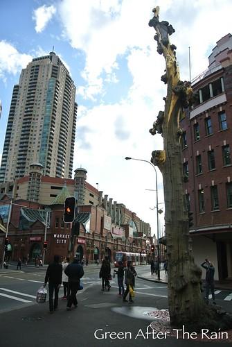 150907h Sydney Chinatown _01