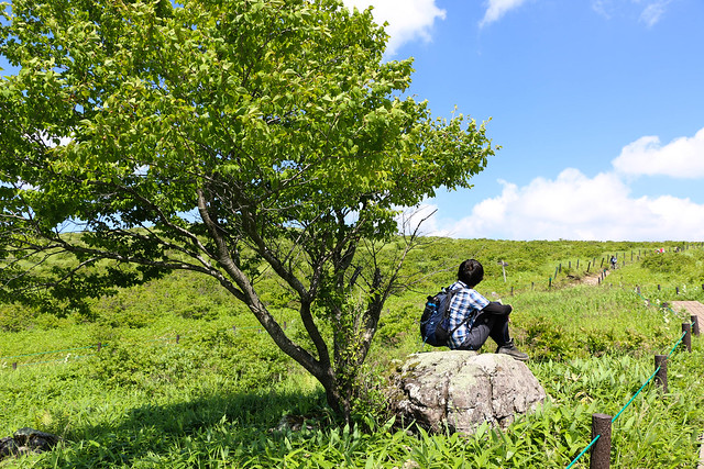 2014-07-26_00700_霧ヶ峰.jpg