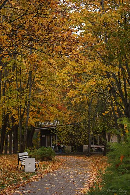 autumn_roads_07