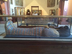 The #coffin of #ancient #Egyptian #Queen Tiye , the mother of ancient #King #akhenaton at Egyptian #Museum in #Cairo #Citizenjournalism #blogger #History #ancientegypt #Discoveryourcity #ThisisEgypt #EverydayEgypt