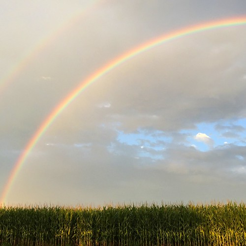 midwest rainbow