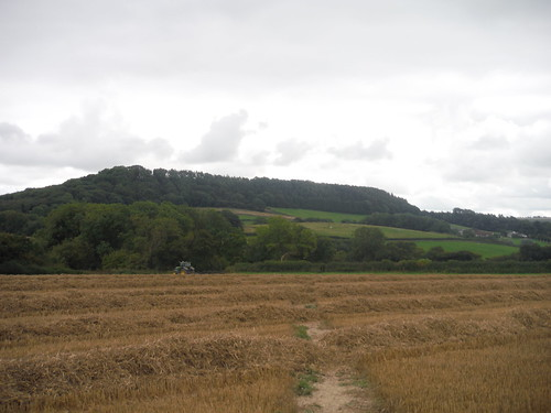 Castle Ditches Iron Age Hillfort Site, from Chantry Hill