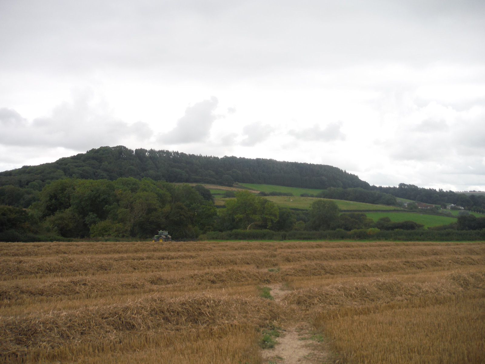 Castle Ditches Iron Age Hillfort Site, from Chantry Hill SWC Walk 250 Tisbury Circular via Alvediston