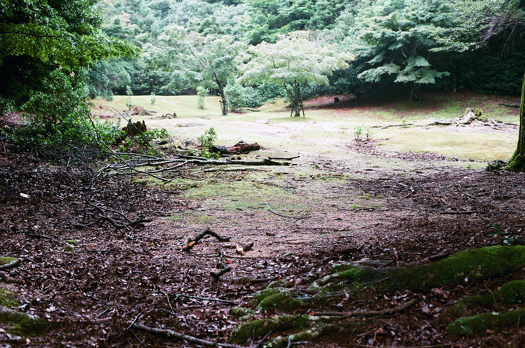 嚴島(Itsuku-shima)広島 Hiroshima 2015/08/31 我走的一個步道。  Nikon FM2 / 50mm FUJI X-TRA ISO400 Photo by Toomore