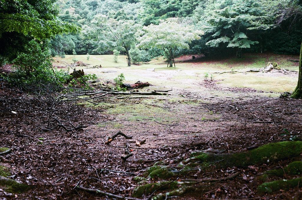 嚴島(Itsuku-shima)広島 Hiroshima 2015/08/31 我走的一個步道。  Nikon FM2 / 50mm FUJI X-TRA ISO400 Photo by Toomore