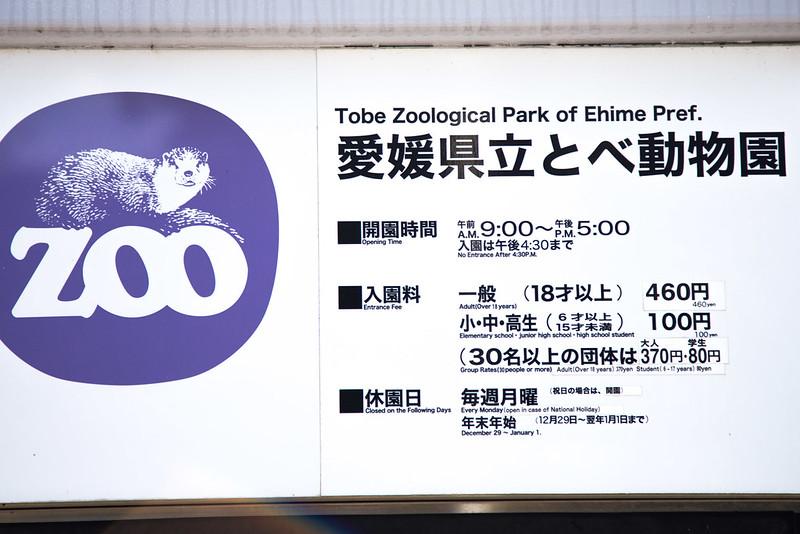 tobe_zoo-2