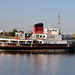 MV Royal Daffodil in East Float Dock