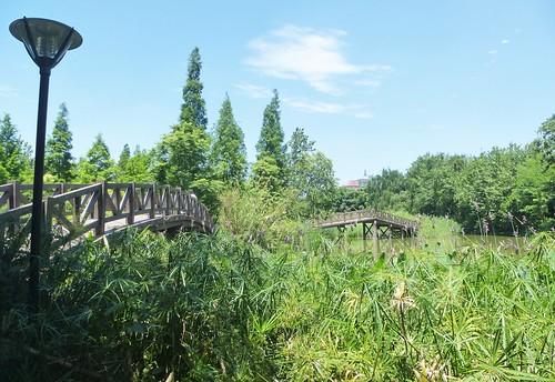 CH-Chengdu-Parc-Huanhuaxi (4)