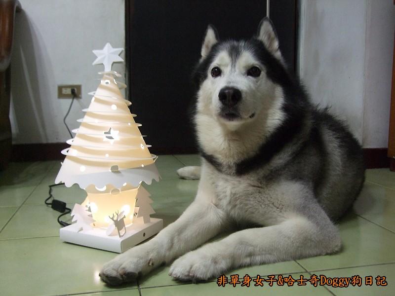 Doggy與紙箱王聖誕樹造型燈飾組12