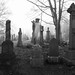 Newington Cemetery by marsupium photography