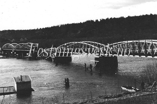 Larvik (698)