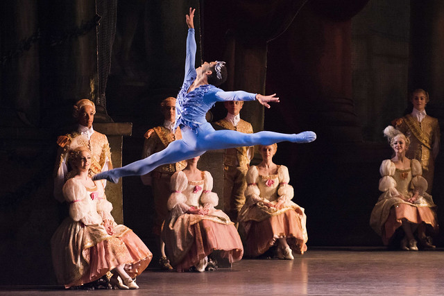 Marcelino Sambé as the Bluebird in The Sleeping Beauty, The Royal Ballet © ROH/Tristram Kenton, 2014