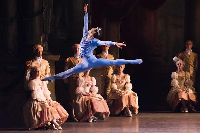 Marcelino Sambé as the Bluebird in The Sleeping Beauty, The Royal Ballet © ROH/Tristram Kenton, 2014