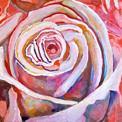 the adventure of roses, scott richard