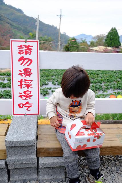 劉正男高冷草莓園 (8)