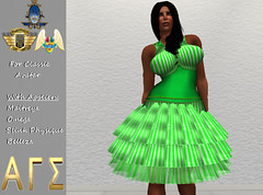AGS INC. Womens Saint Patrick's Day with Appliers