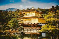 Kinkaku-ji Temple_金閣寺_4