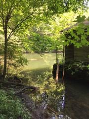 Kripalu 2015 at Monks pond