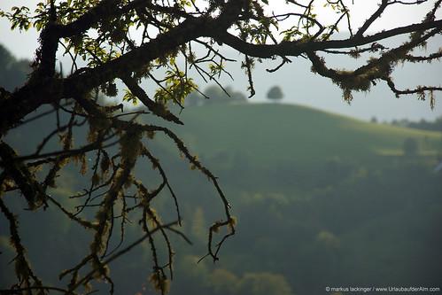 Blick von der Kreinzhuabn in Kärnten