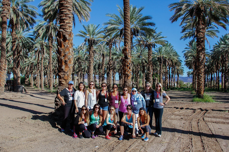 Bloggers By the Big Six Original Date Palms