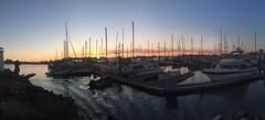 Sunset at Fifth Avenue Marina