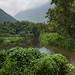 Waipio Valley Pano by Shabdro Photo
