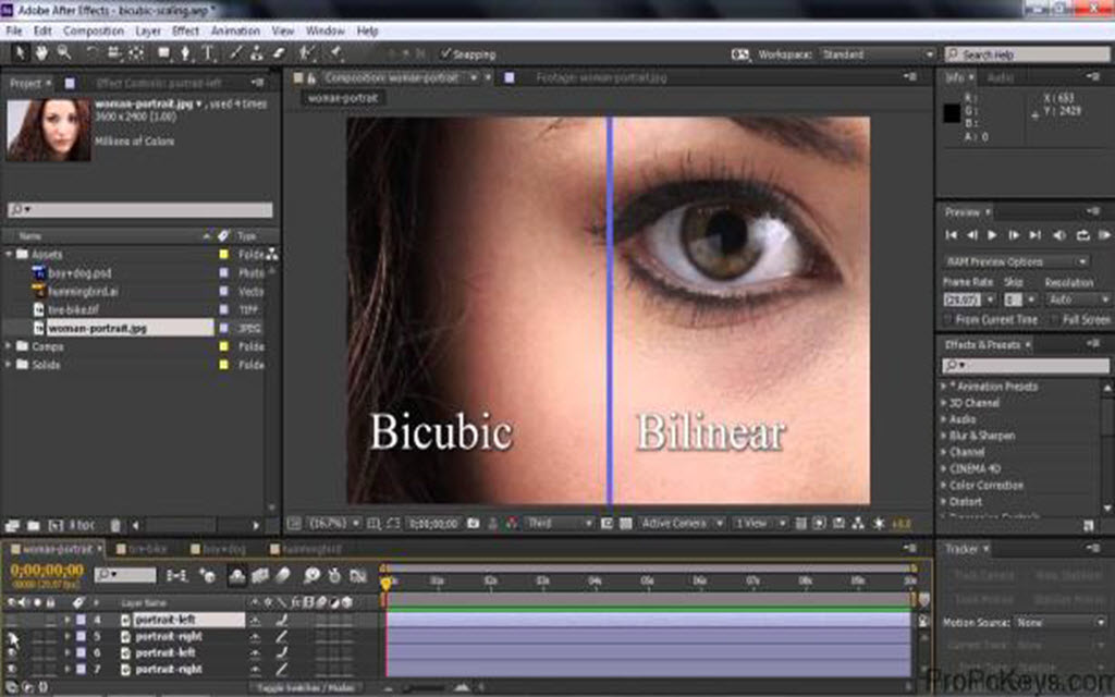 how to download adobe after effects cc 2017 for free