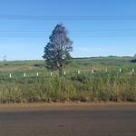 Fri, 01/20/2017 - 08:09 - View across the Bonlaven Plateau outside Paksong