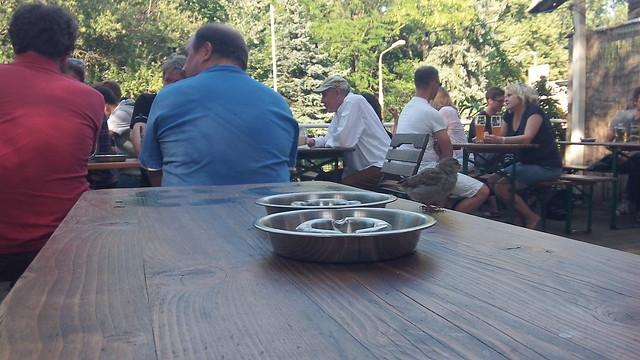 Schleusenkrug Beer Garden