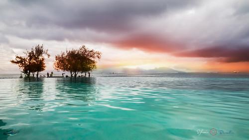 travel sunset summer sun seascape photoshop sunrise landscape polynesia hotel tahiti moorea frenchpolynesia 2015 polynésie ligthroom manava sylvainbernardin