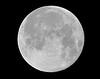 Full Sturgeon Moon - August 2015