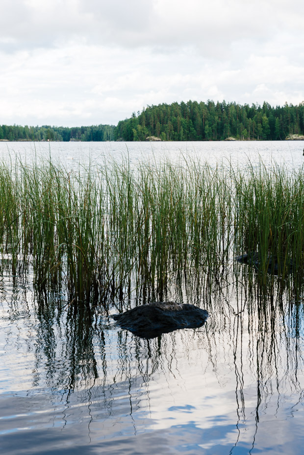 Finland_Crayfish-2397