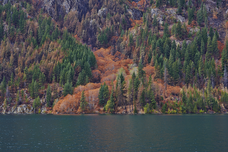 Lake Chelan 41 張圖