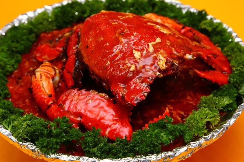 Chilean-Spanner-Crab