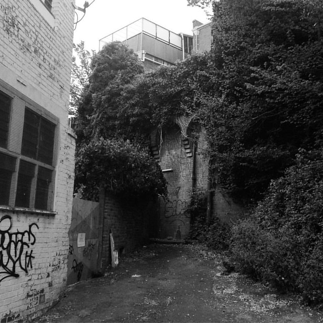 Dead end laneways
