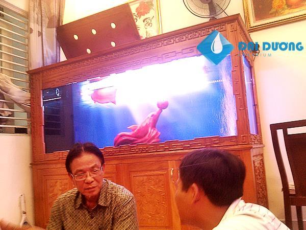Hồ cá rồng chạm A.Sơn