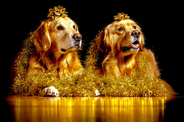 Golden Goldens
