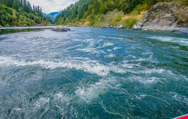 Jet-boating the rapids--DSC3698--Rogue River, OR