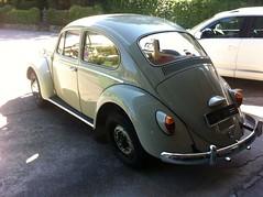 Maurice's 1200