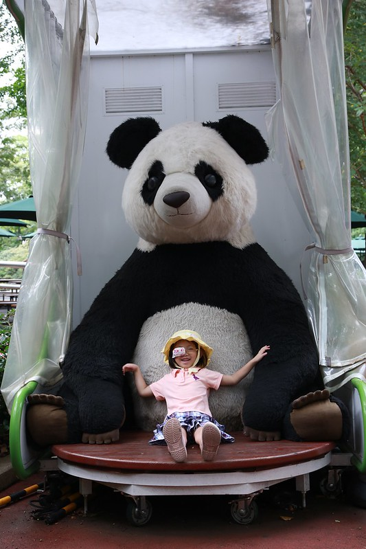 超大的貓熊玩偶