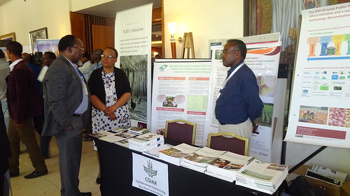 Siboniso Moyo, Program Leader, Animal Science for Sustainable Productivity and Director General's Representative and Gebremedhin Woldewahid, LIVES Tigray Region Coordinator at the joint-stand at Hilton Hotel (photo credit: ILRI\Beamlak Tesfaye)
