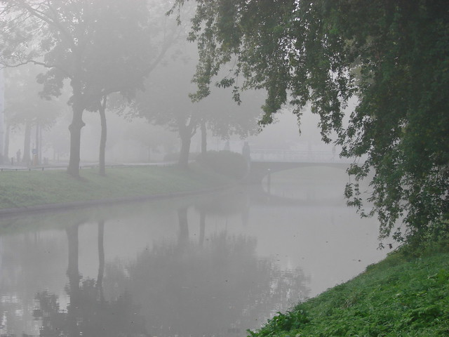 Misty Herenbrug