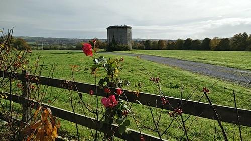 Grange Manor, Kilkenny