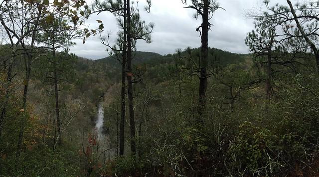Pinhoti on Flagg Mountain