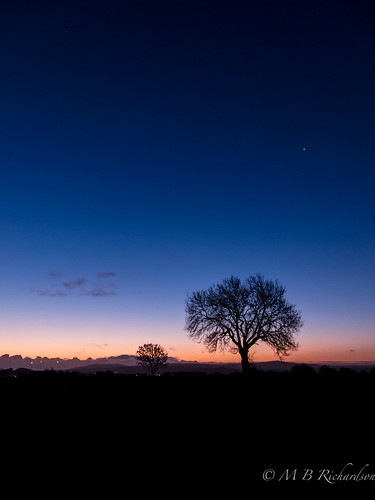 longexposure trees winter sunrise nireland antrim coantrim canons95 365in2015