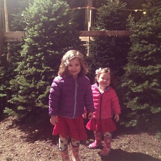 Picking our Christmas tree! We thought it would be cool to get a tree as close to Christmas as possible, but it's too tricky to find one at the last minute. I think we'll have to move our tradition to Gaudete Sunday next year!